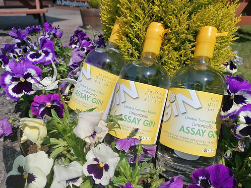 Assay Limoncello Gin- Summer Limited Edition