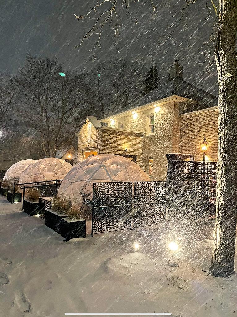 Snow Globe during Snow Storm.jpg