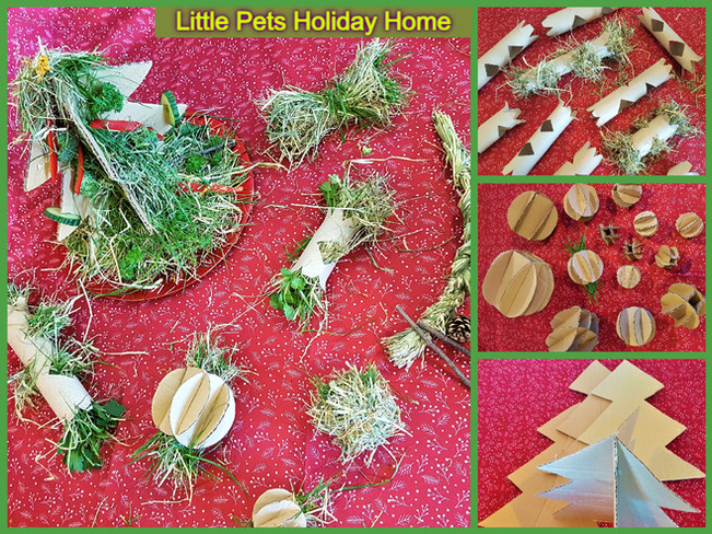 Handmade hay ball, hay rings, bow, braid, etc. and cardboard toys for our guests to explore, play, toss around eat the hay and treats from it. Fun way to encourage guinea pigs and rabbits to eat more hay. Cardboard toys and boxes for each guest are used in the play areas and removed after the hay and treat have been eaten.