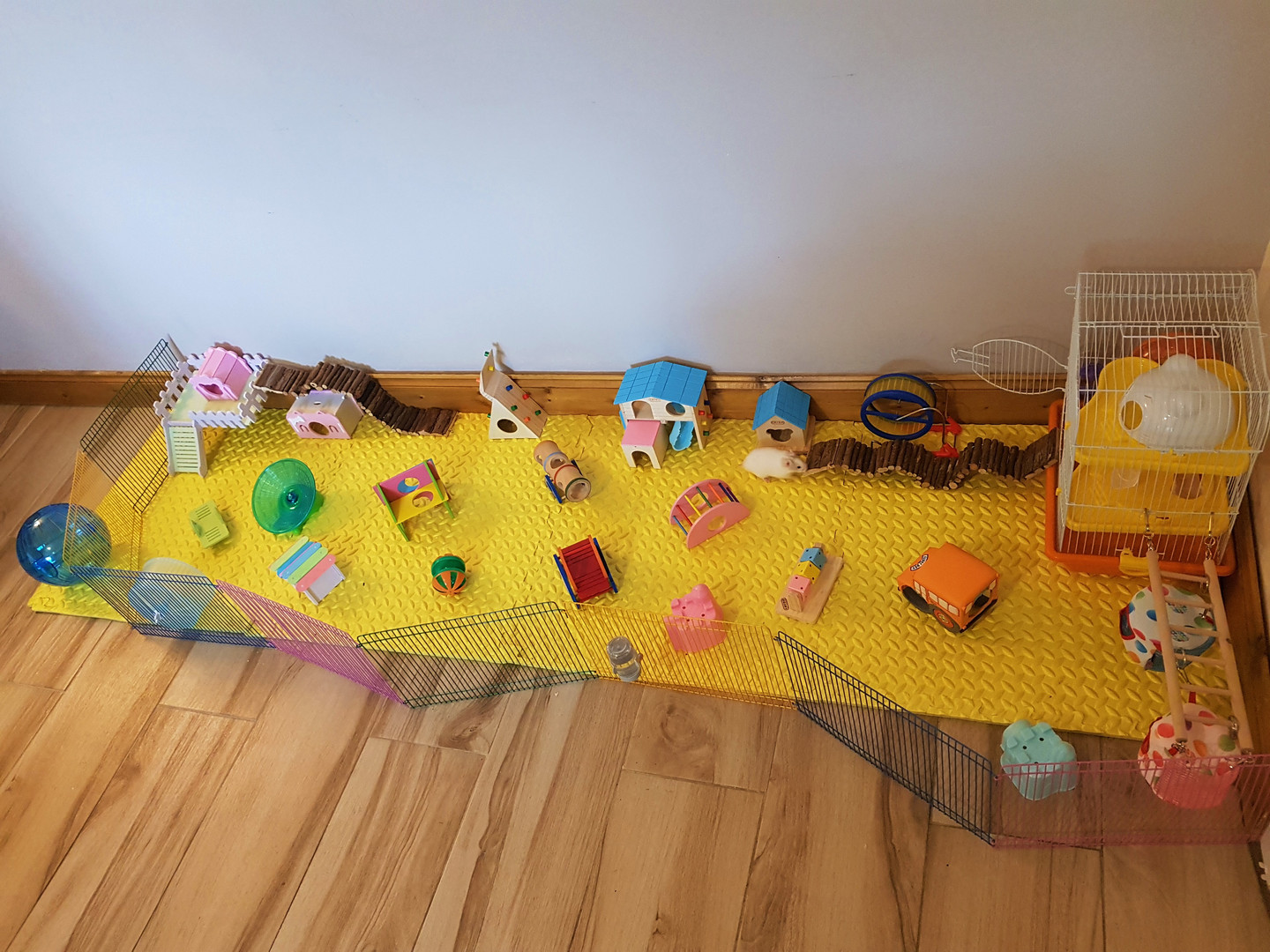 Sample of some of the hamster houses and play set