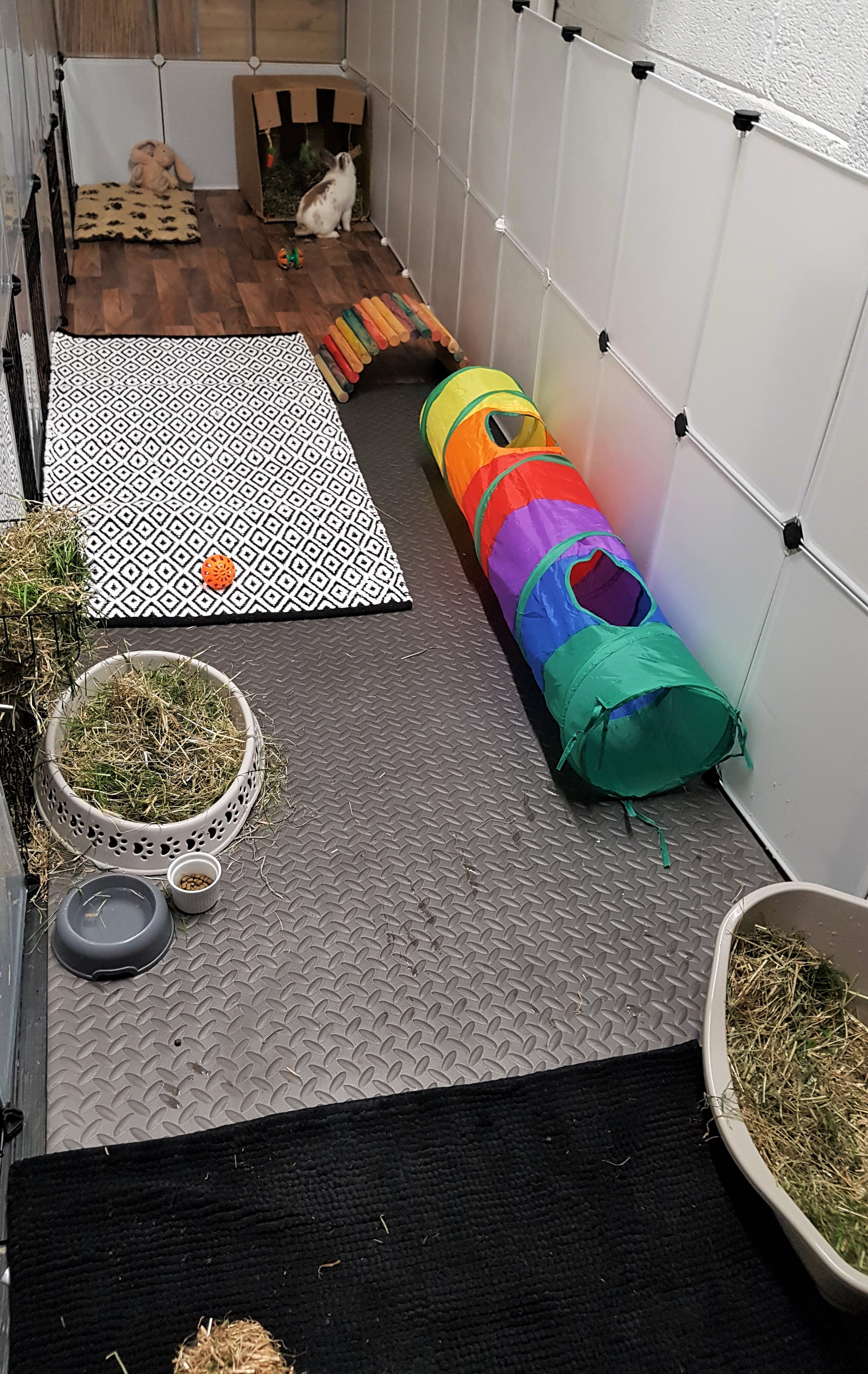 our rabbit room indoor play area