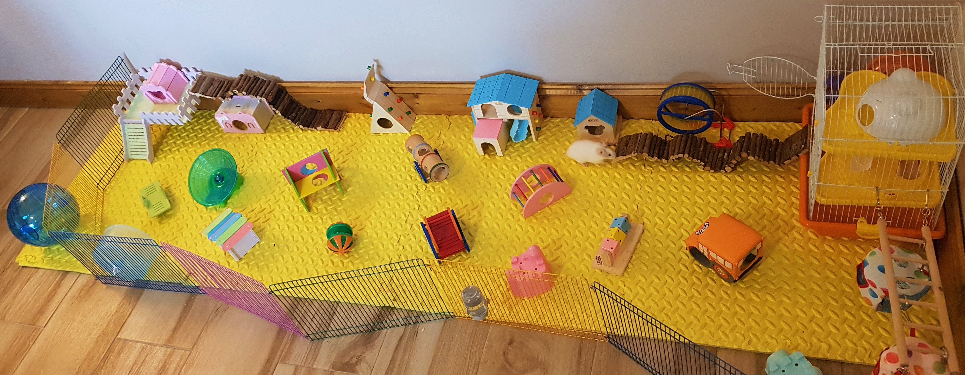 Sample of all the hamster houses and play set.