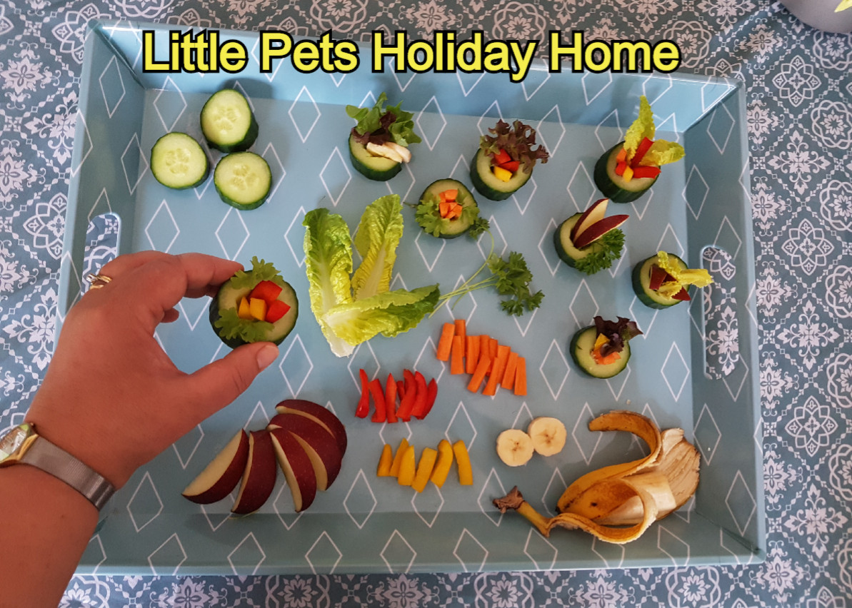 We make fresh vegetables and fruit snacks for our guest rabbits, guinea pigs, etc.