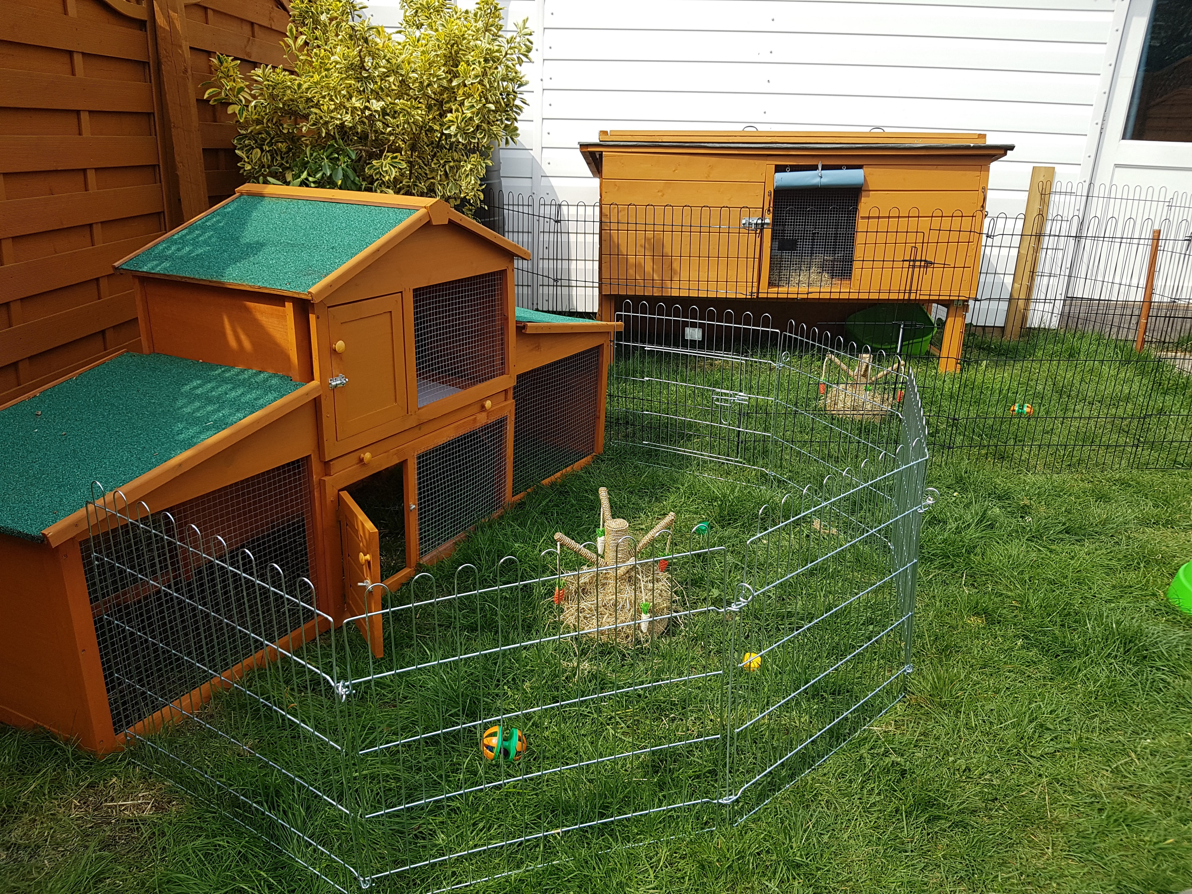 Holiday Hutches for Rabbits