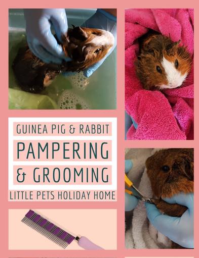 pampering & Grooming