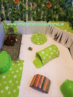 Green & White stars Play area set up