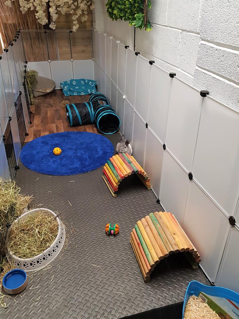 Rabbit room - Indoor play area