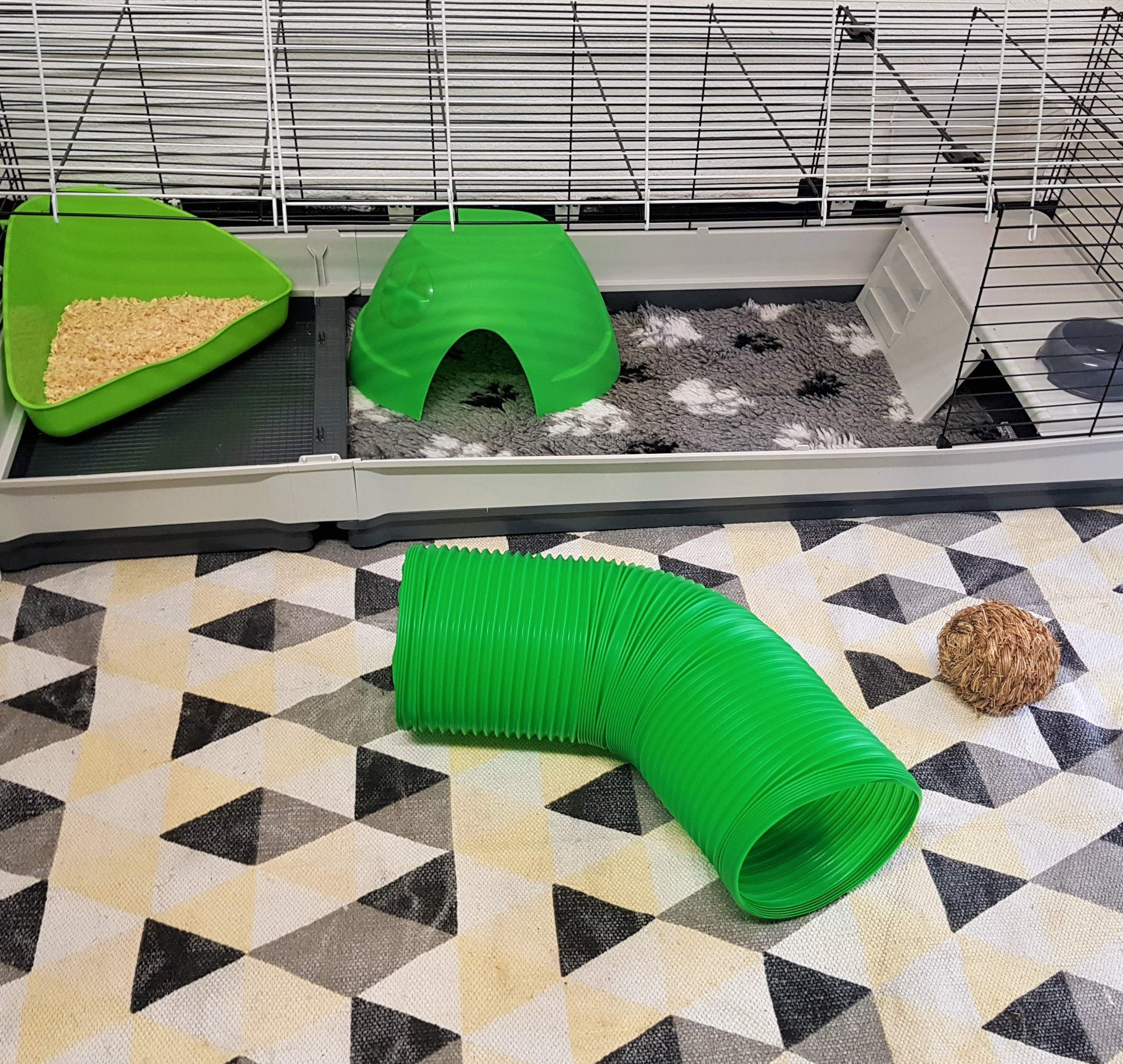 160 cm indoor cage with play pen attached to it