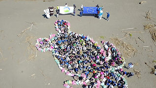 EU Cleanup.jpg