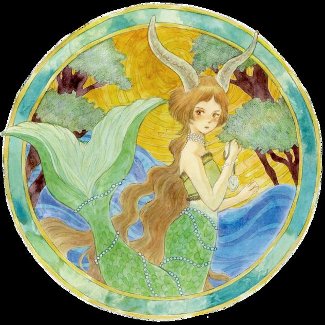 2016 capricorn