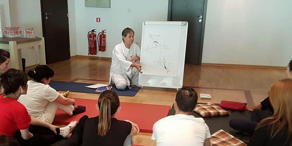 Seiki Shiatsu International workshops with Calisar sensei (4)