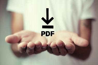 PDF Download web button ..jpg