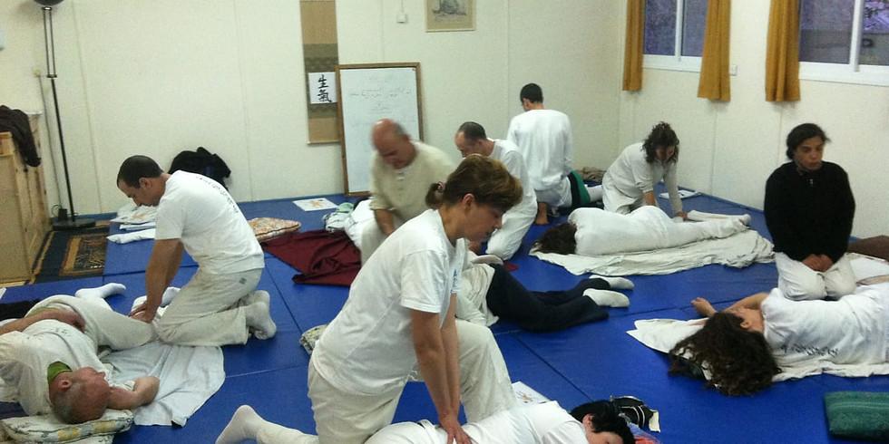 Seiki Shiatsu International workshops with Calisar sensei (1)