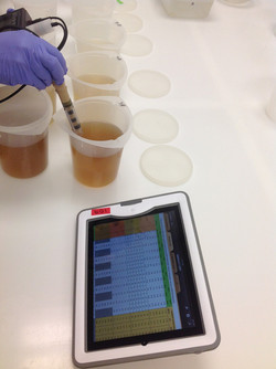 Acute test water quality