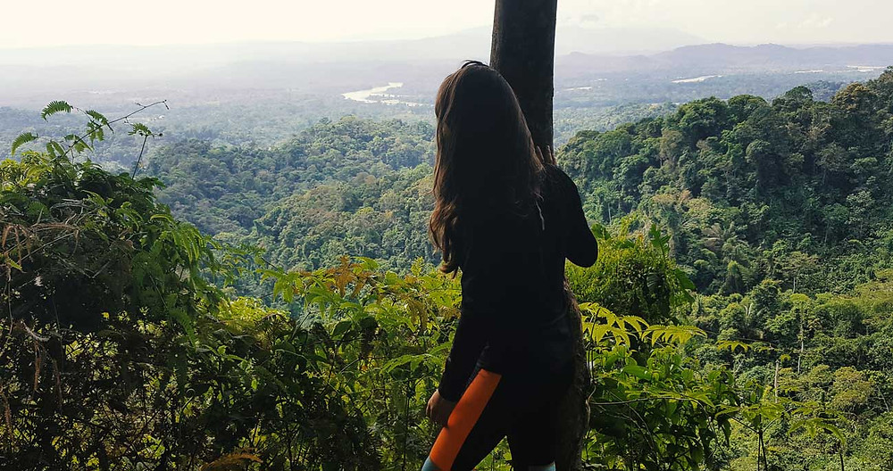 Mirador Amazonie