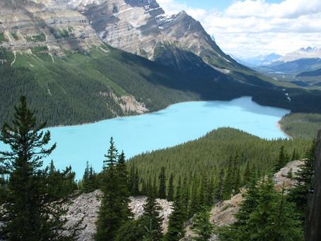 Ma traversée du Canada en bus en 3 jours.