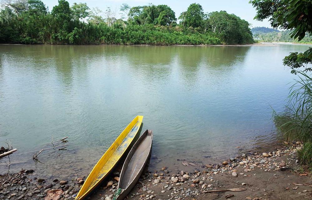 fleuve Napo