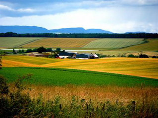 Cultura, territorio rurale e costiero : al via i nuovi piani regionali