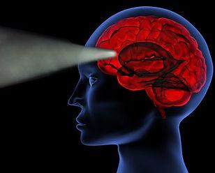 brainactivity3r.jpg