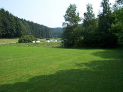 Sportplatz Blick Richtung Wald