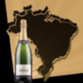 bresil miolo brut cuvee tradition chardonnay