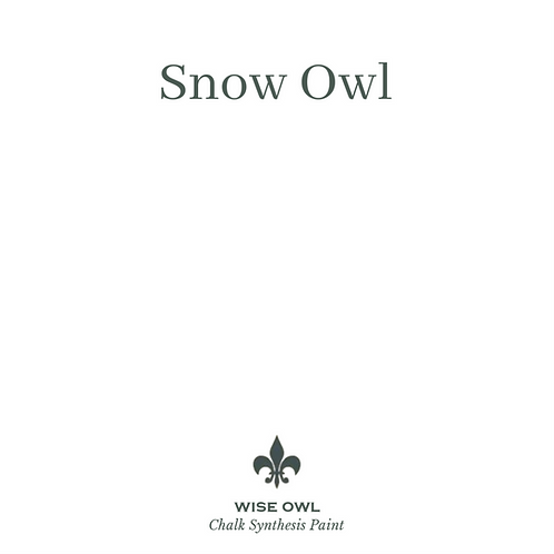 SNOW OWL Wise Owl Chalk Synthesis Paint, Pint