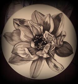 17 Queen Ann Table, Magnolia 2