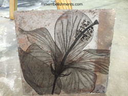hibiscus x ray stained art, logo