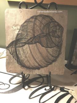 4seashell x ray art