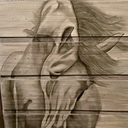 9 stain shading horse copy.jpg