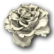18handstainedrosetable_clipped_rev_1.png