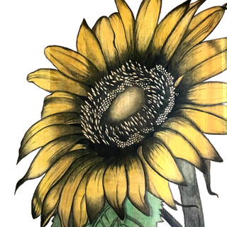 2b Yellow Sunflower table_clipped_rev_1