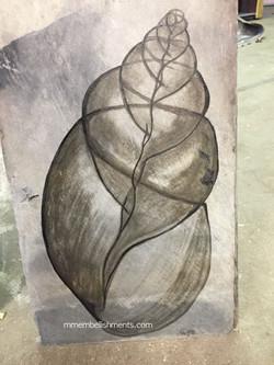6 seashell x ray stain art