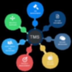 TMS-Diagram.png