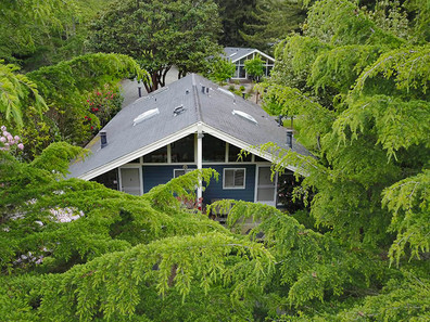 Queen rooms among trees