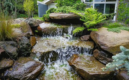 Waterfall in our Courtyard
