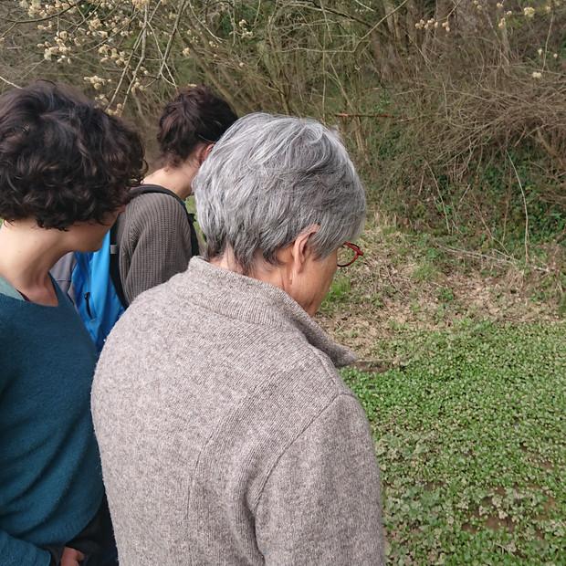 La compagnie Infusion visite l'Espace Naturel Sensible de la Sanne-Amont.