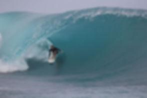 Fiji Baz.jpg