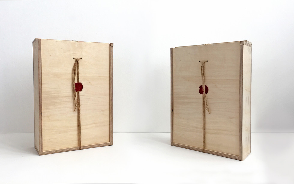 2 boxes .jpg