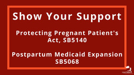 Action Alert: Show Support for PPPA and Postpartum Medicaid Expansion