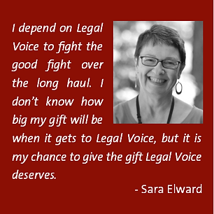 Legal Voice, visionaries, donate, planned giving, estate planning, wills
