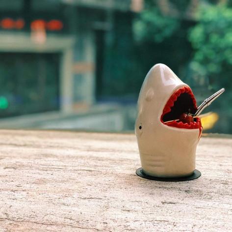 Not Jaws.jpg