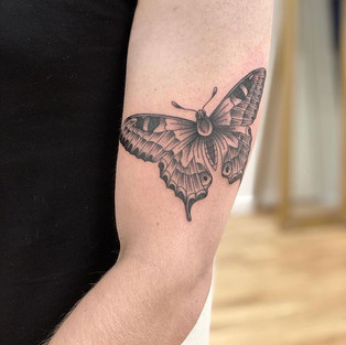 Butterfly I did a while back on Ross. Th