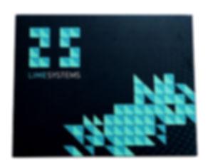 лайм системс спереди.jpg