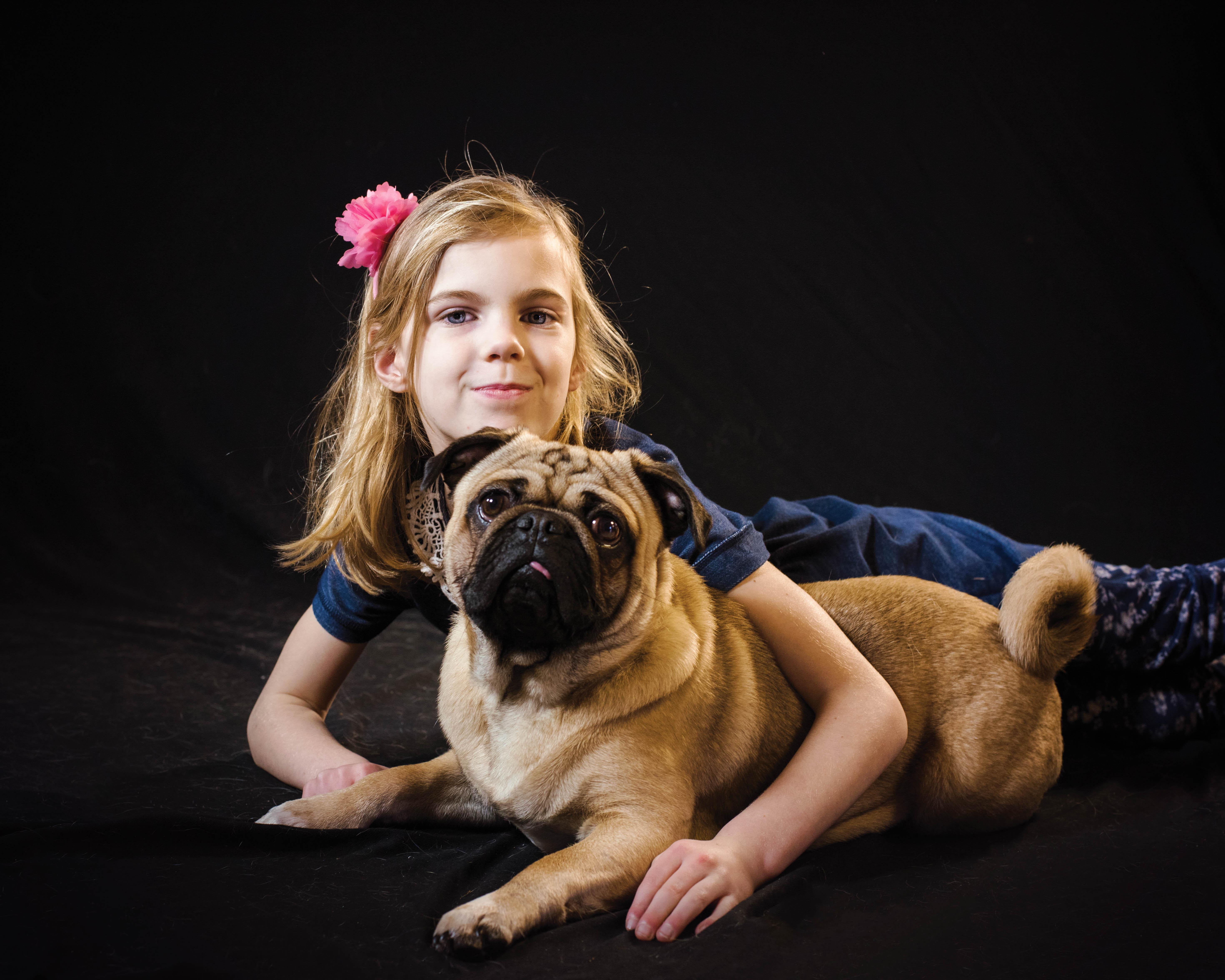 Pet_Photographer_Colchester_cute_pug