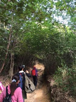 ヨガとアフリカンジャンベin六甲山