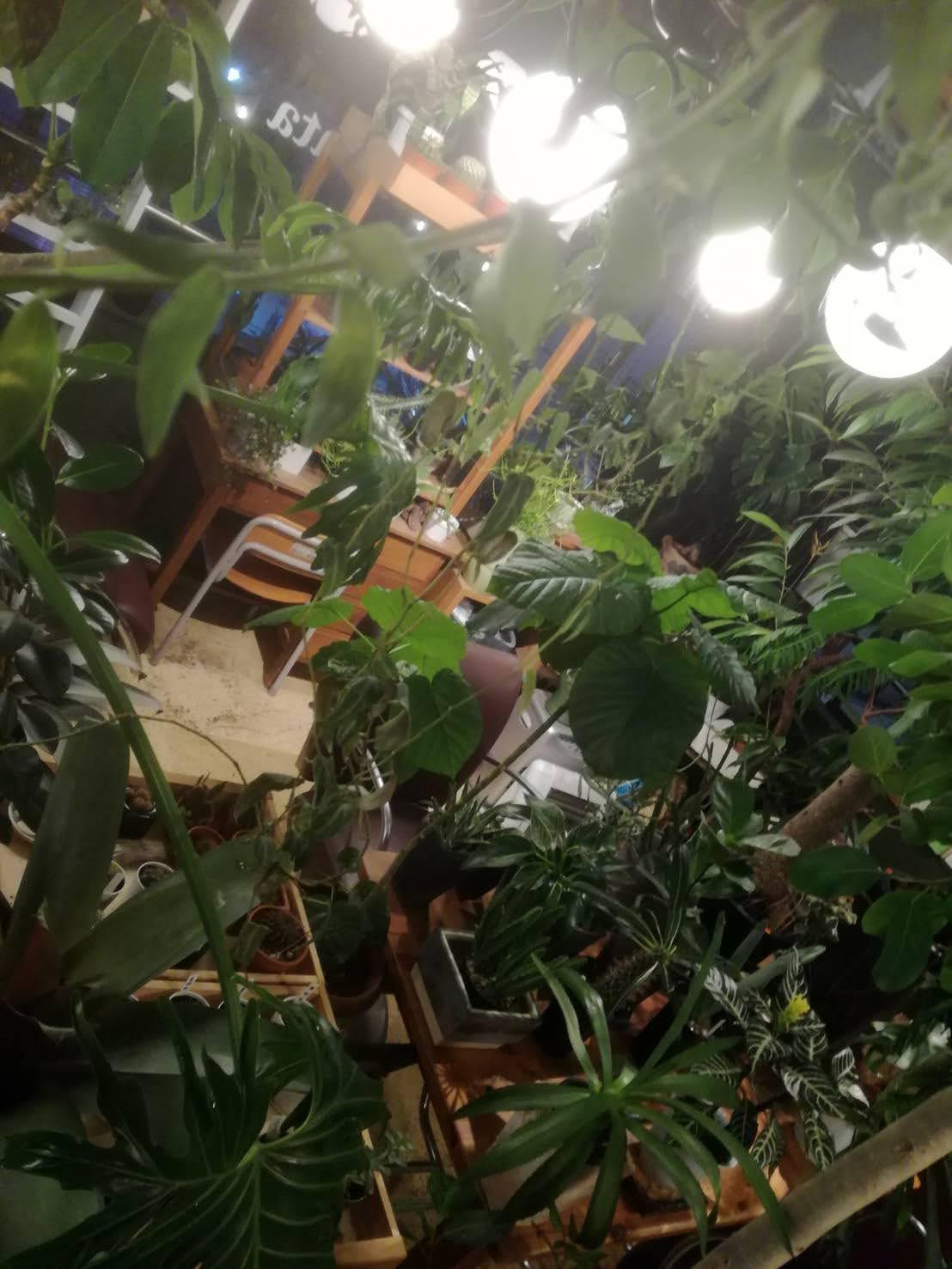 anteriors funiture kobe/アンテリアス・ファニチャー神戸・大阪店内