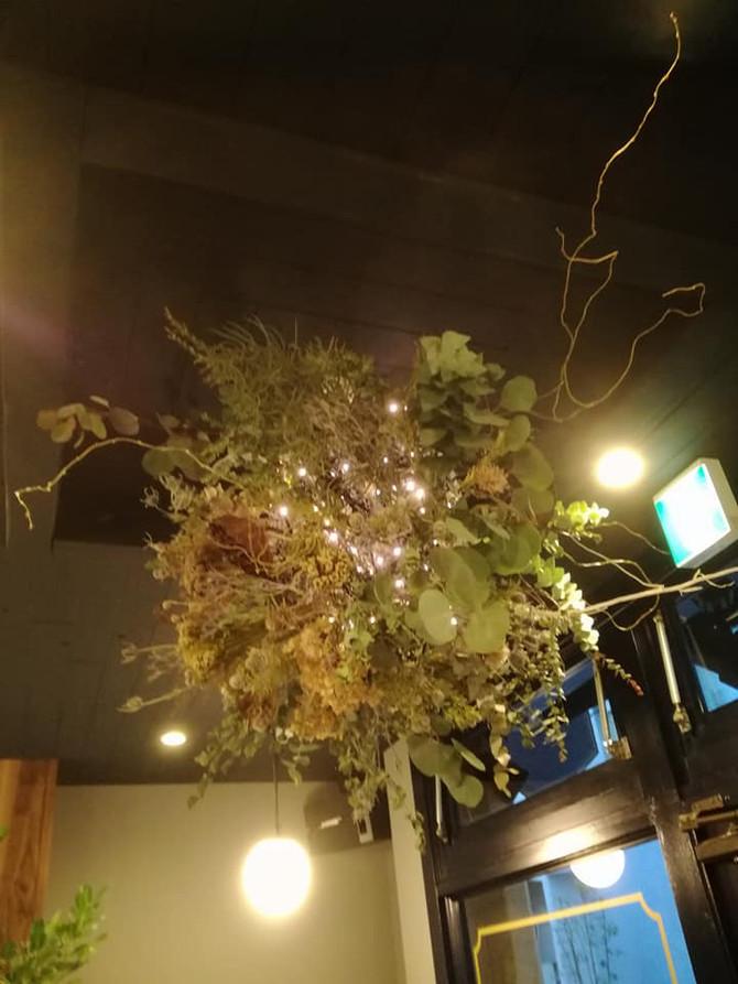 神戸三宮に12月5日(火) 新しくオープンするカフェマザー様にドライプランツを納品しました