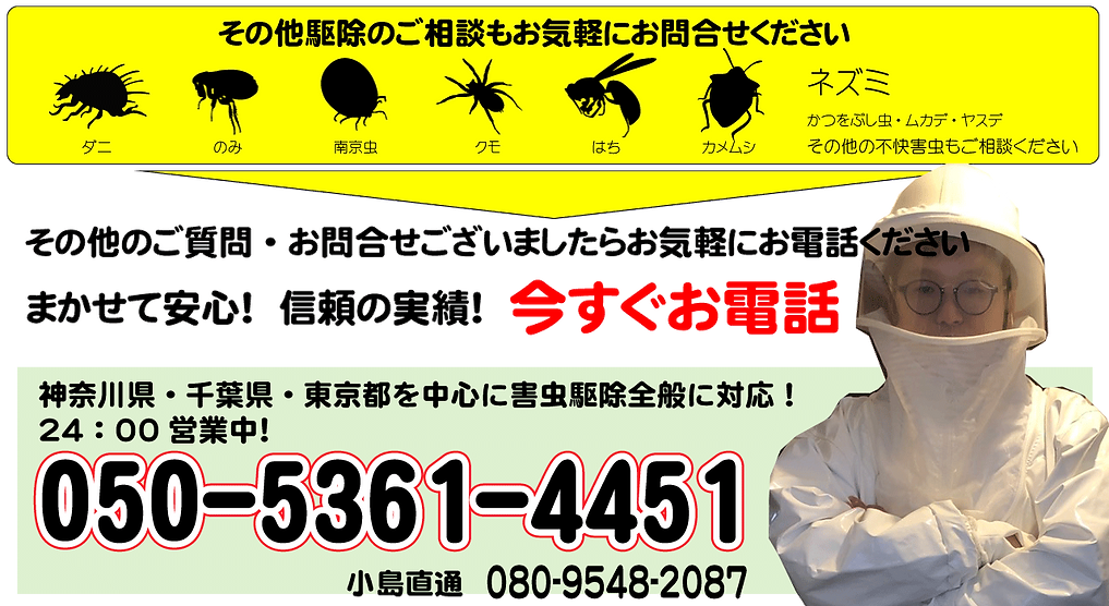 トップ画像004桜さんバージョン.png