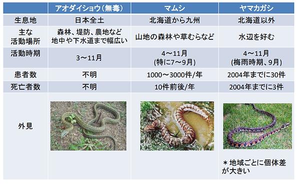 毒蛇.png